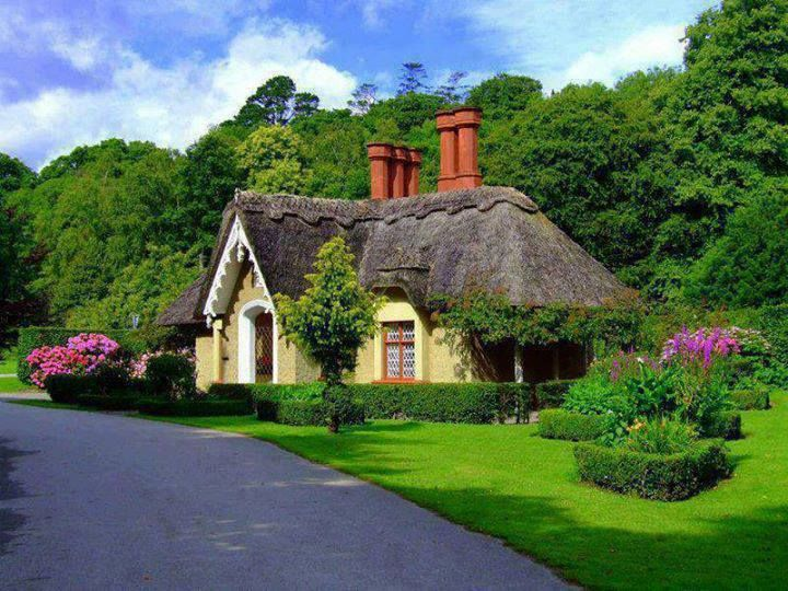 Thatched cottage in ireland let me show you the world pinterest - The thatched cottage ...