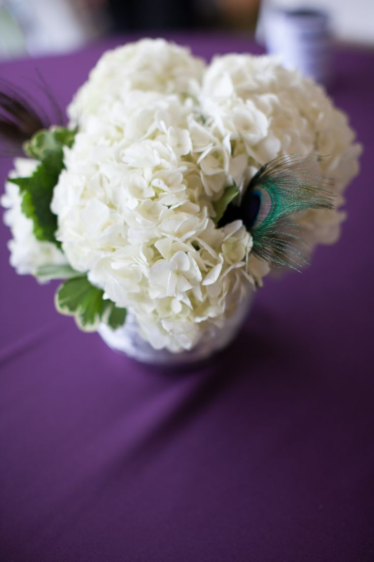 Simple centerpieces made from hydrangea and pit with a peacock feather accent