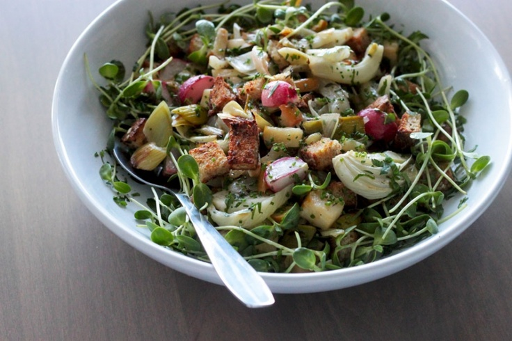 super springy: roasted panzanella with fennel, radishes, sprouts and ...