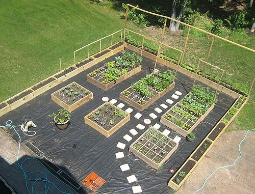 Square foot garden layout wow outdoors gardening for Square garden design