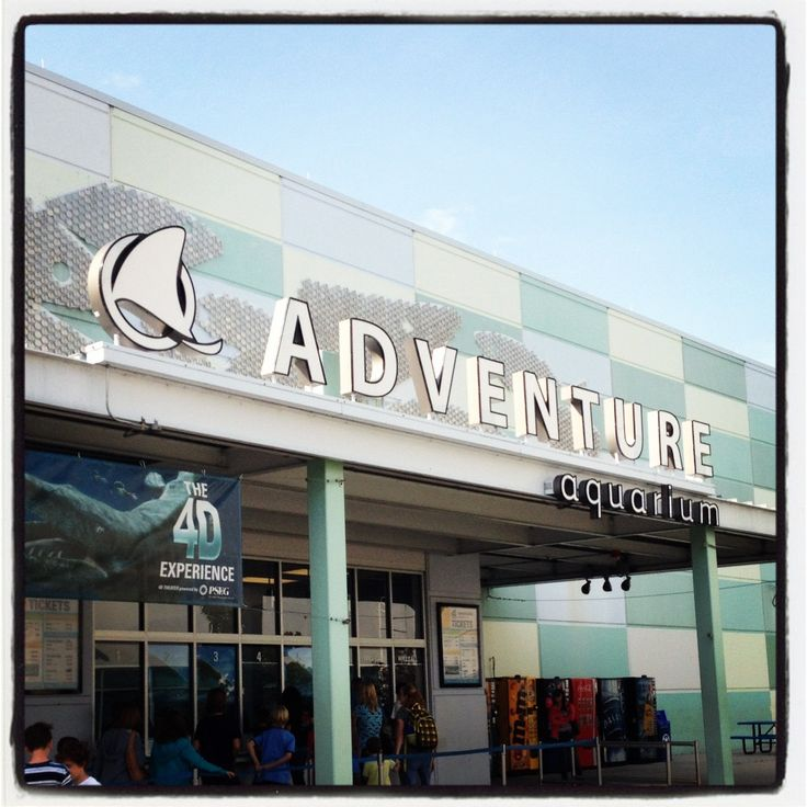 Adventure Aquarium Camden New Jersey Took A Ride Places Ive Be