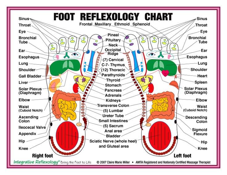Légend image throughout printable reflexology foot chart