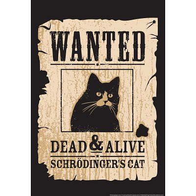 Schrodinger's Cat Snorg Tees Poster