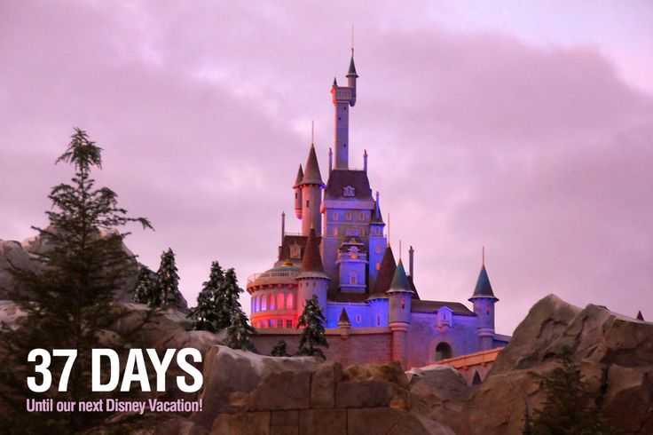 our next Disney Vacation! We are counting the days to our next Disney ...