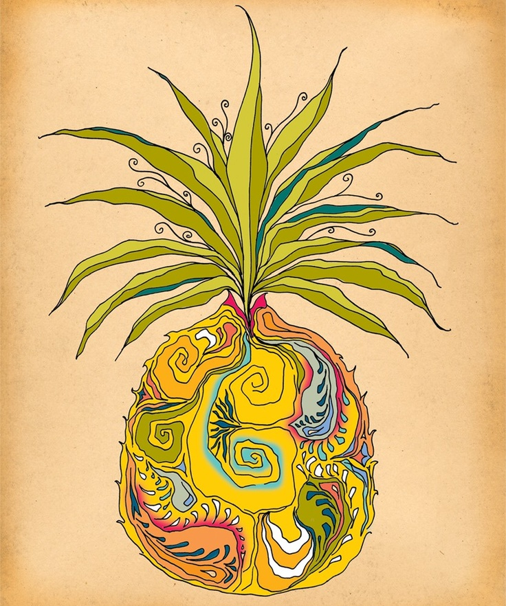 Pineapple | Pineapples...