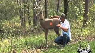 Bow Shooting Tips, How To Shoot Your Bow More Accurately