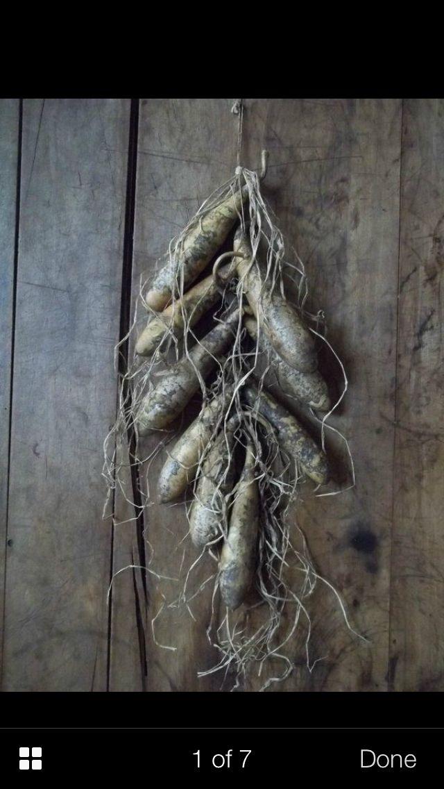 Early prim/primitive gourd bunch | Primitive Crafts DIY | Pinterest