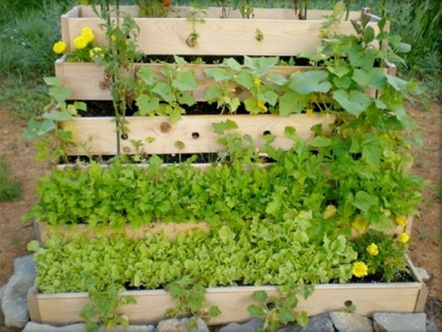 Urban Garden Vertical Raised Bed- 3x4
