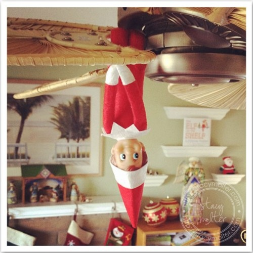 Site has daily updates for elf on a shelf ideas