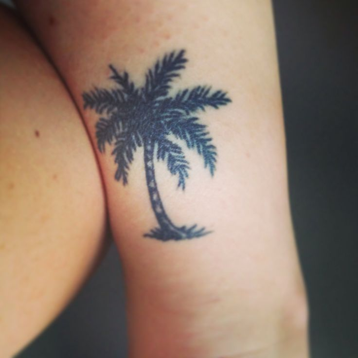 My ankle tattoo of a palm tree tattoos pinterest for Palm tree ankle tattoo