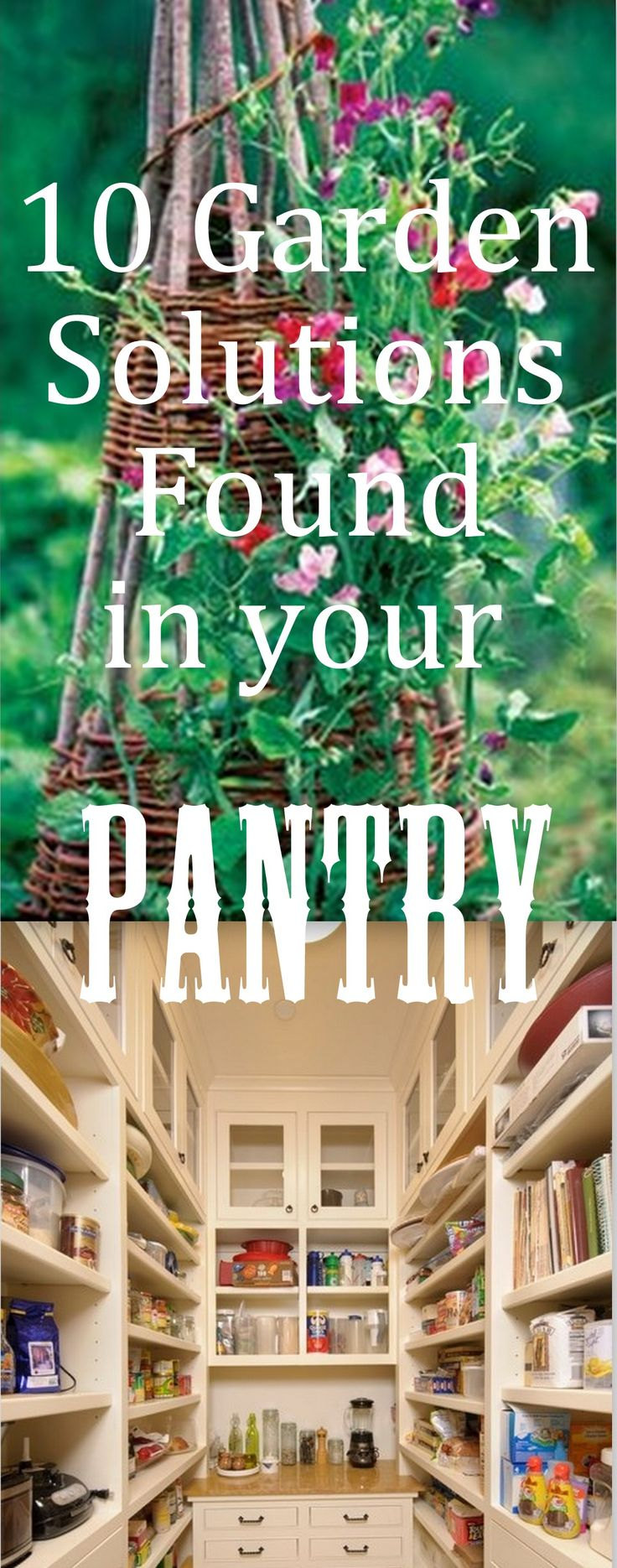 10 Garden Solutions in Your Pantry