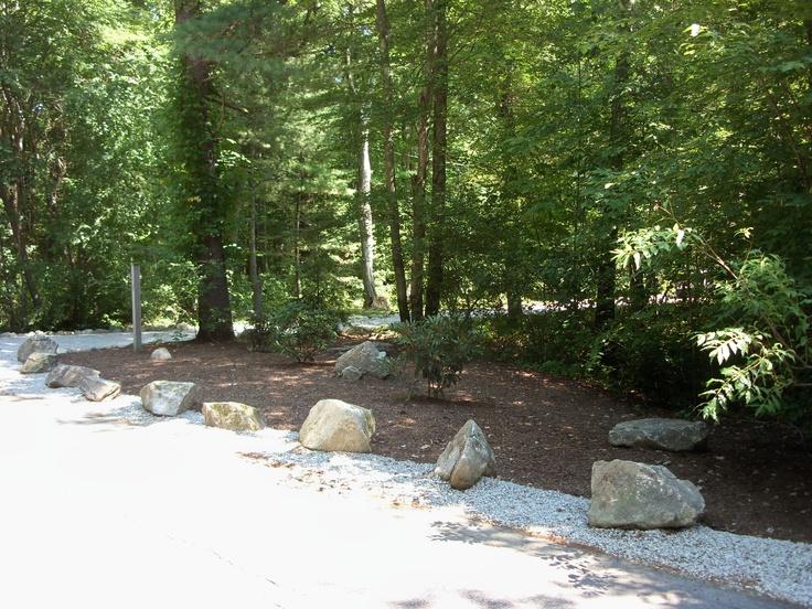 Landscape for a long driveway