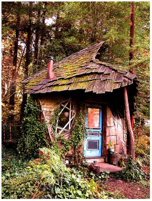 Pin By Molly Schmidt Meyer On Cabin Ideas Pinterest