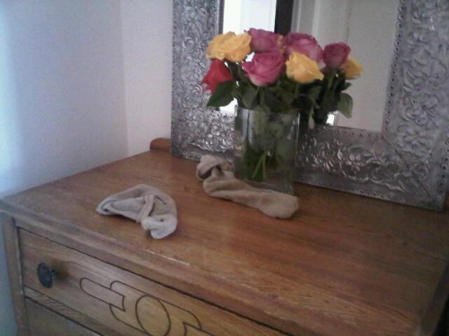 Roses & Man Socks Vignette @ Coffee with Julie