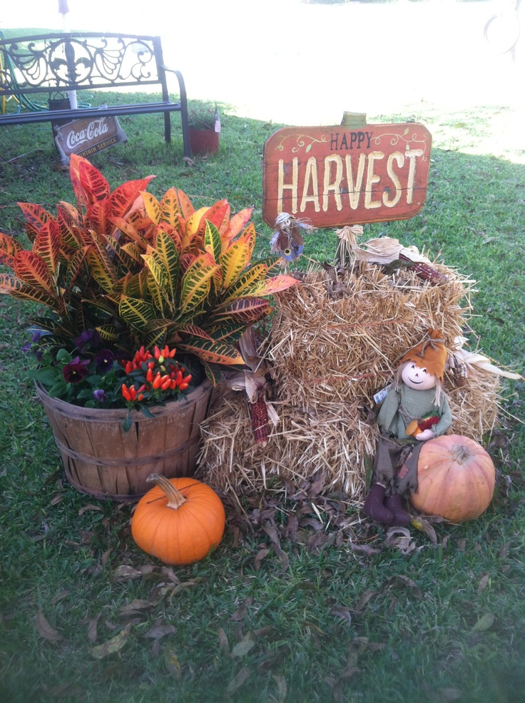 My little fall hay bales fall pinterest for Bales of hay for decoration