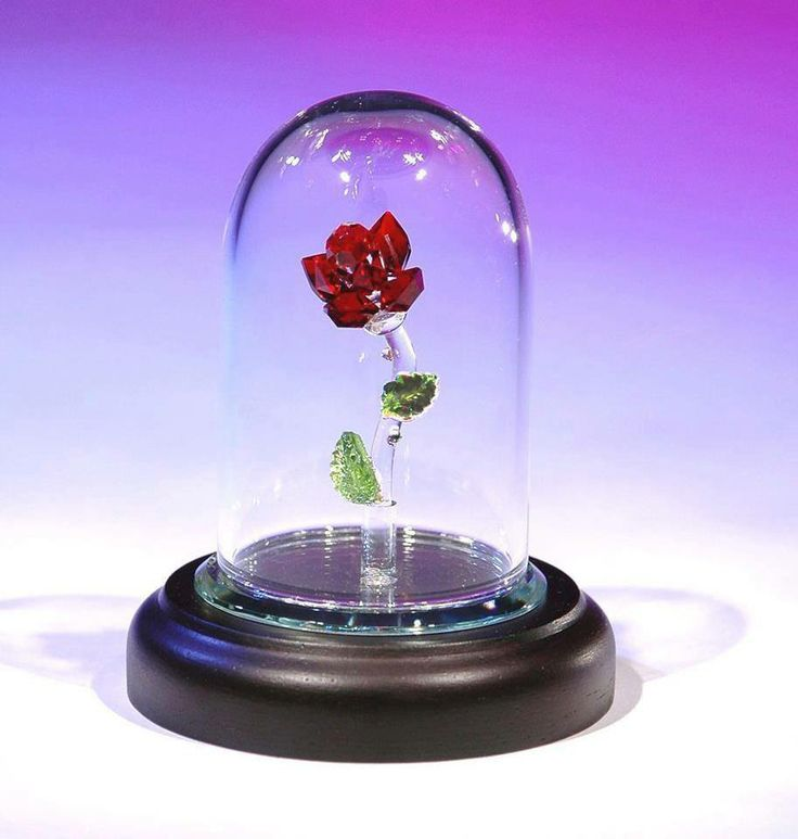 Crystal world enchanted rose beauty and the beast for Rose under glass
