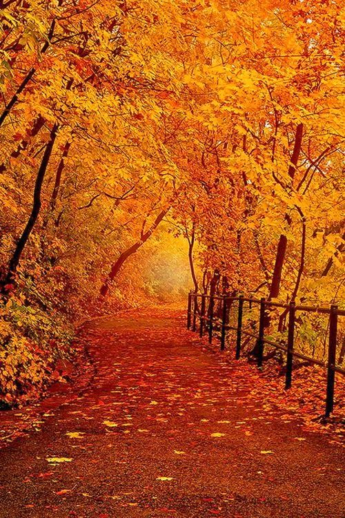 I want to walk here!