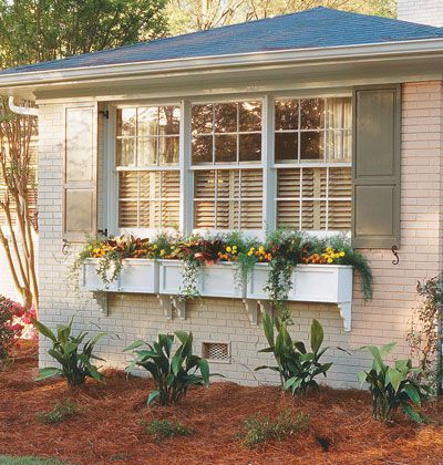 Front Entry: Shutters