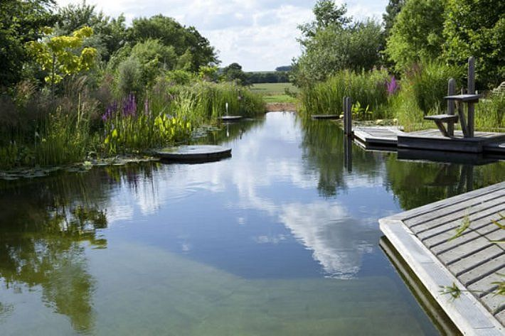 Natural Swimming Pool Water Gardens Ponds Pools Pinterest