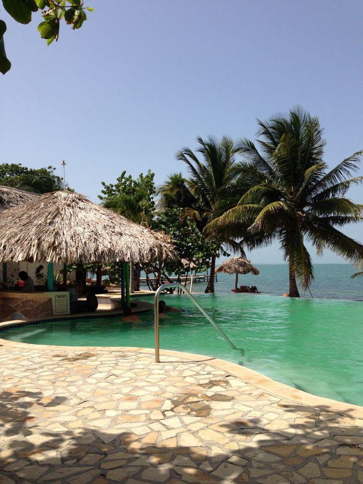jaguar reef lodge pool hopkins belize belize loved it. Black Bedroom Furniture Sets. Home Design Ideas