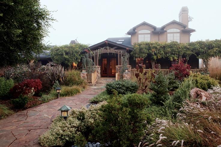 Succulents in a winter garden in Petaluma, Ca. Love the containers!