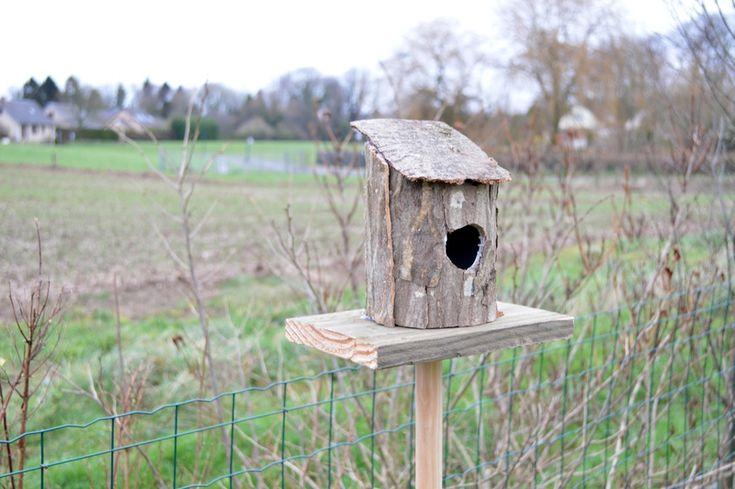Fabriquer une cabane a oiseau les derni res for Oiseaux decoration exterieur
