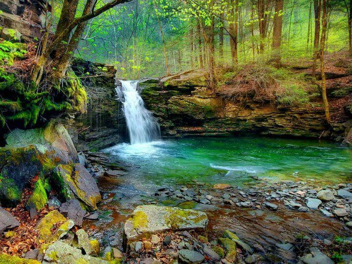 Columbia (PA) United States  city photos : Ricketts Glen State Park is a Pennsylvania state park in Columbia ...