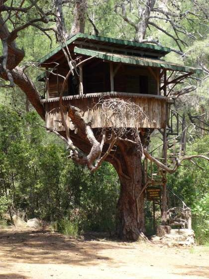 Casas en arboles cases en arbres pinterest - Casas en arbol ...