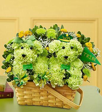 1800flowers board of directors