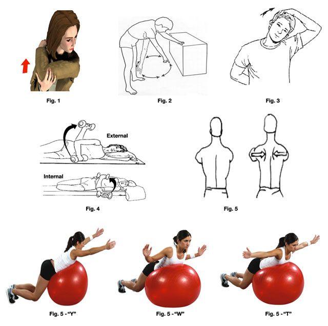 Rotator cuff rehab exercises quotes