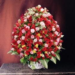 valentine flowers india