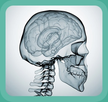 E Chester Disease http://www.youraccidentsolicitors.co.uk/types-of-claim/head-injury ...