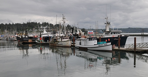 Pin by deni nichols on thoughts of home pinterest for Newport oregon fishing