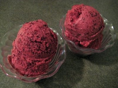 Protein-rich blueberry sorbet | Sips and Nibbles: Ice Ice Baby | Pint ...