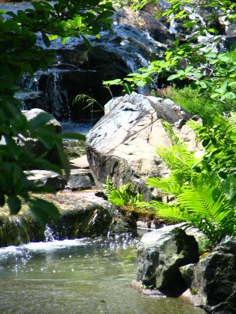 Backyard Hill Waterfall :  natural landscape waterfall If I had a hill this is what I might do