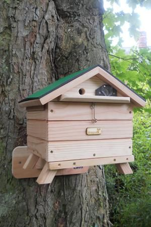 Project Working Where To Get Mason Bee Hive Plans
