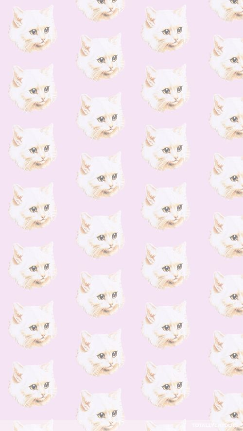 cat pattern/ wallpaper  Get your house in order  Pinterest