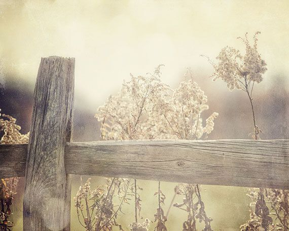 Chic country fence heartliness et lovelihood pinterest for Nature decor