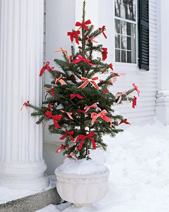 Sweet little potted tree adorned in simple red bows