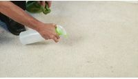 How to Remove remove red carpet stains | eHow.com