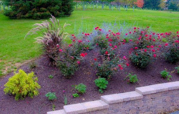 beautiful front yard landscaping ideas gardens pinterest