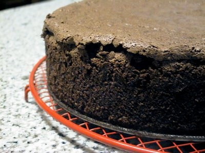 Decadent Chocolate Torte Recipe — Dishmaps