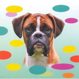 Boxer Dog Magnetic Notepad From Sarah J Home Decor