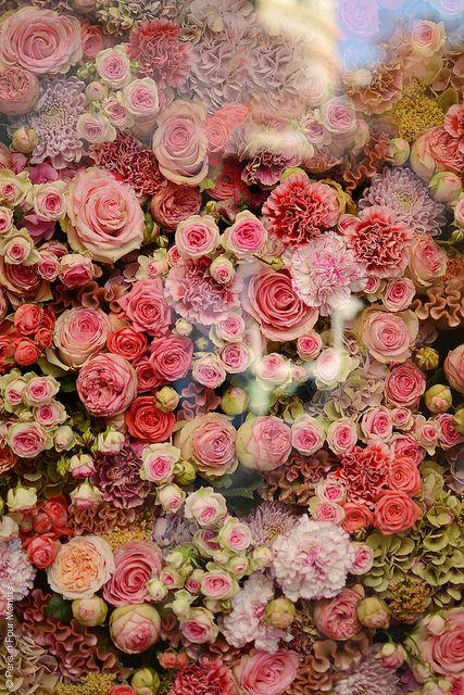 #roses at christian dior...