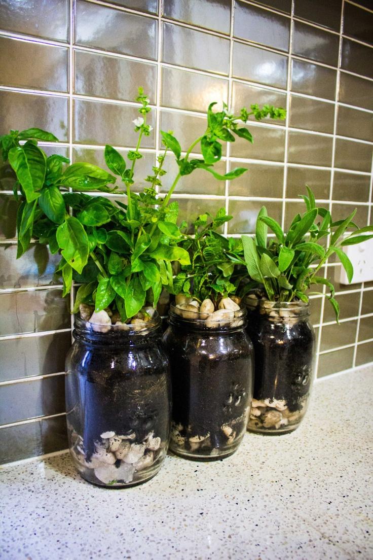 Mason Jar Herb Garden Planter
