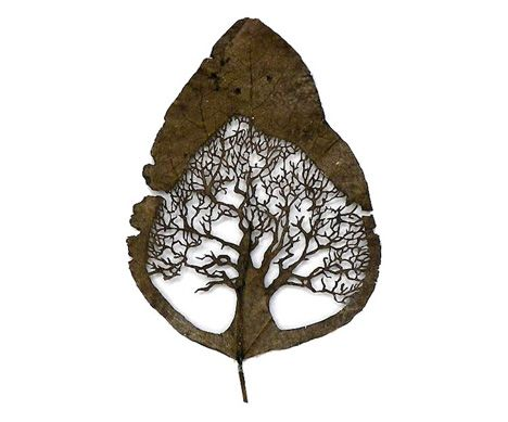 Tree leaf carving