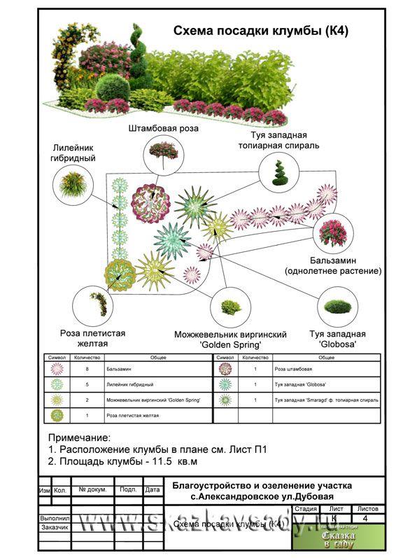 Схема посадки растений в тени