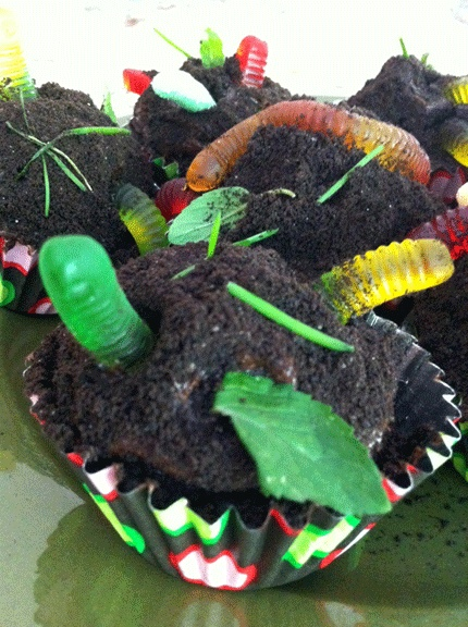 Worm Dirt Cupcake Cakes Chocolate cake, chocolate fudge icing, Oreo ...