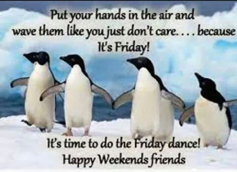 Image result for Happy friday funny images
