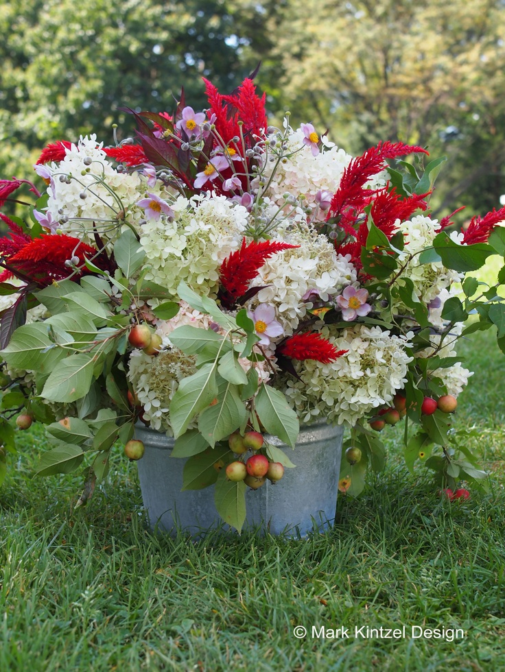 Early fall garden flowers flowers pinterest for Flowers landscape gardening